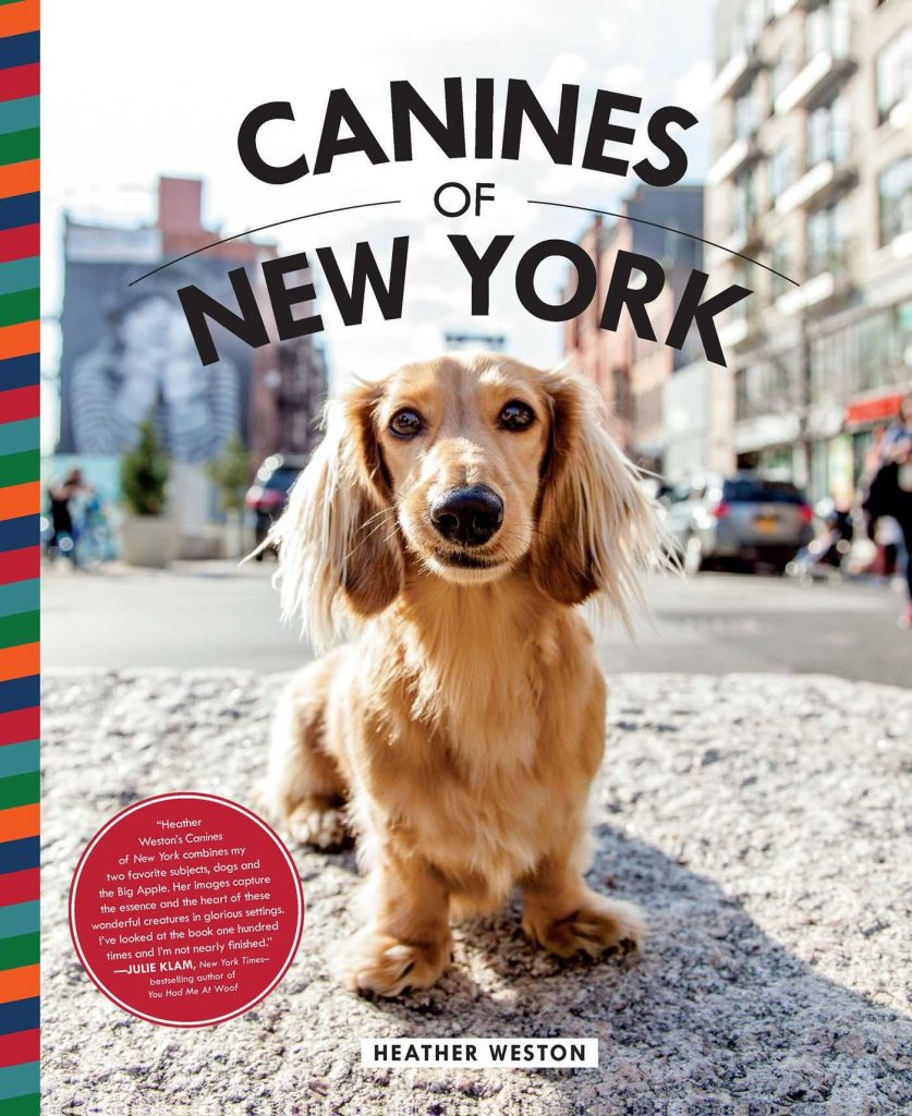 12 BEAUTIFUL COFFEE TABLE BOOKS FOR DOG LOVERS - Hey, Djangles. heydjangles.com - Dog coffee table books, dog decor, Canines of New York - Heather Weston