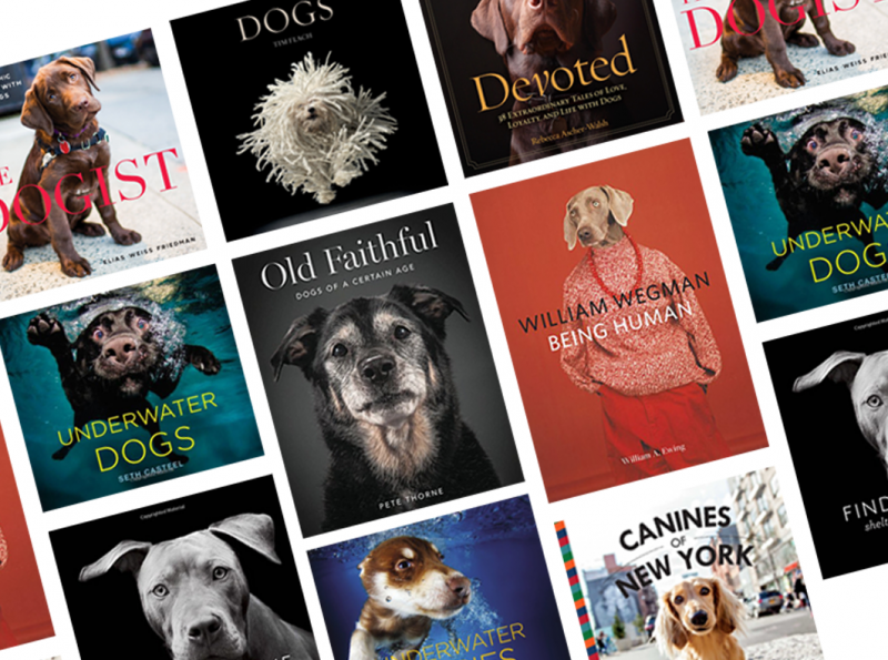 12 BEAUTIFUL COFFEE TABLE BOOKS FOR DOG LOVERS - Hey, Djangles