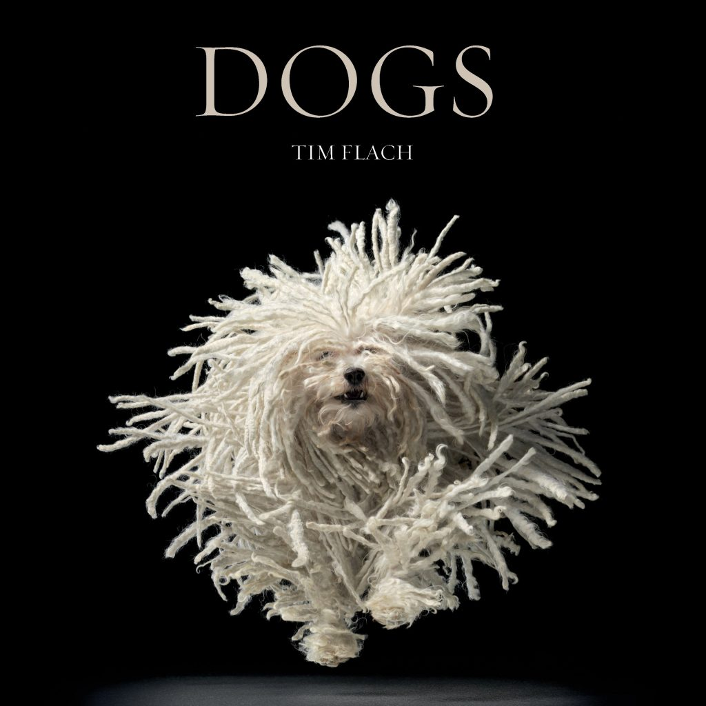 12 BEAUTIFUL COFFEE TABLE BOOKS FOR DOG LOVERS - Hey, Djangles. heydjangles.com - Dog coffee table books, dog decor, Dogs - Lewis Blackwell & Tim Flach