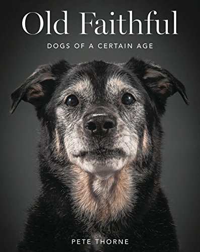 12 BEAUTIFUL COFFEE TABLE BOOKS FOR DOG LOVERS - Hey, Djangles. heydjangles.com - Dog coffee table books, dog decor, Old Faithful - Pete Thorne