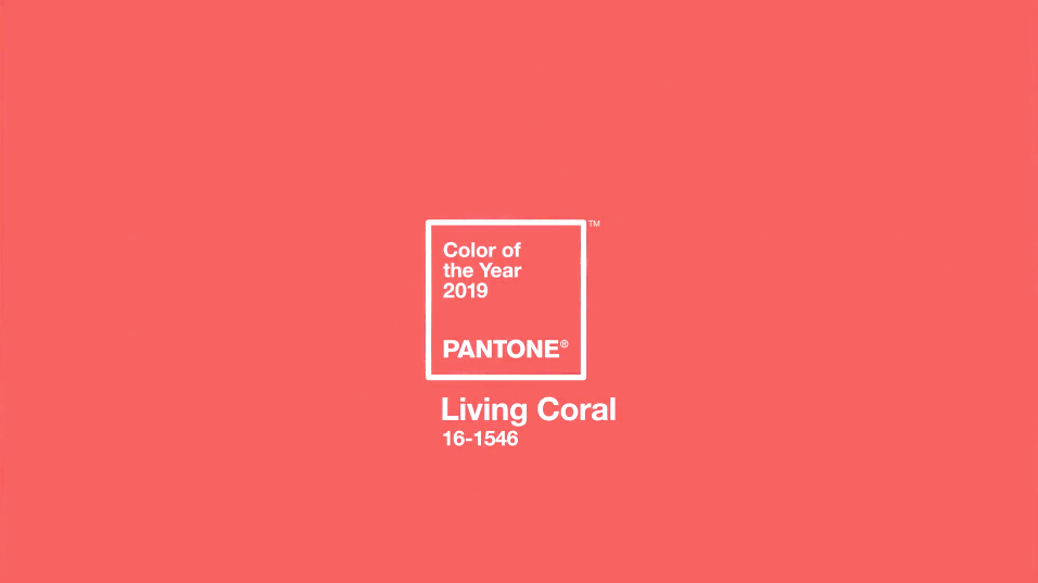 DECORATING WITH LIVING CORAL, PANTONE COLOR OF THE YEAR 2019 – heydjangles.com – Bright, bold and oh so eye-catching, Living Coral has been announced as Pantone Color of the Year 2019 and we couldn't be happier! Find out how to decorate your home with this gorgeous hue right here. Coral decorating ideas, coral design inspiration, coral aesthetic, coral home decor. Image credit: Pantone. #pantonecoloroftheyear2019 #coraldecor #coralaesthetic