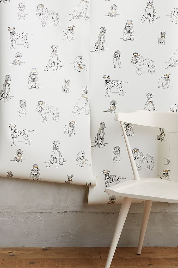 Image via Anthropologie, feat. Dog's Life Wallpaper