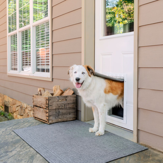 Image via PetSafe, feat. Extreme Weather Aluminum Pet Door