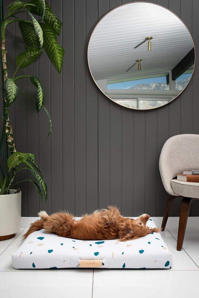 Image via Design Milk feat. Laylo Pets Classic White Terrazzo Dog Bed