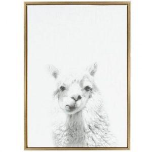 llama wall art, llama themed home decor
