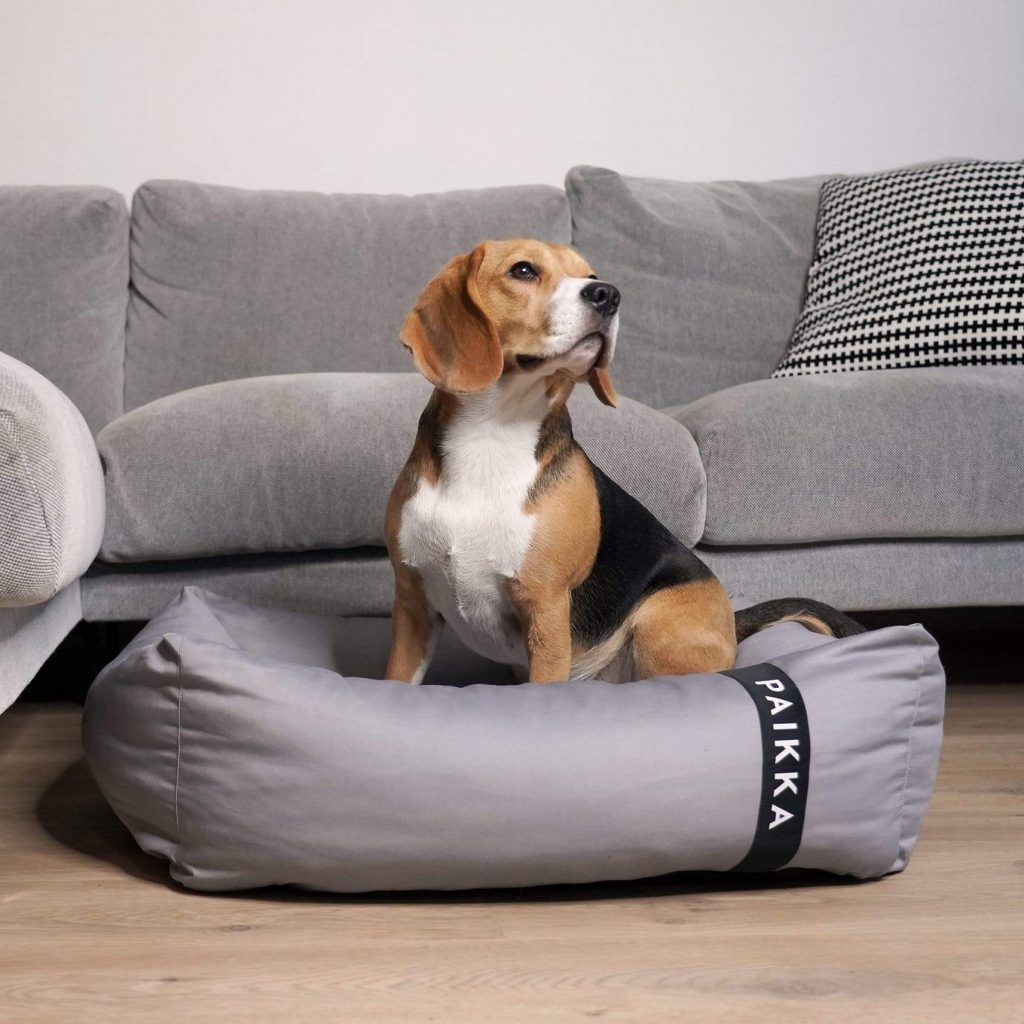 Image via Design Milk feat. Paikka Recovery Orthopedic Dog Bed