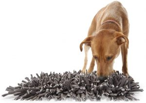 dog snuffle mat, dog foraging for food in snuffle mat