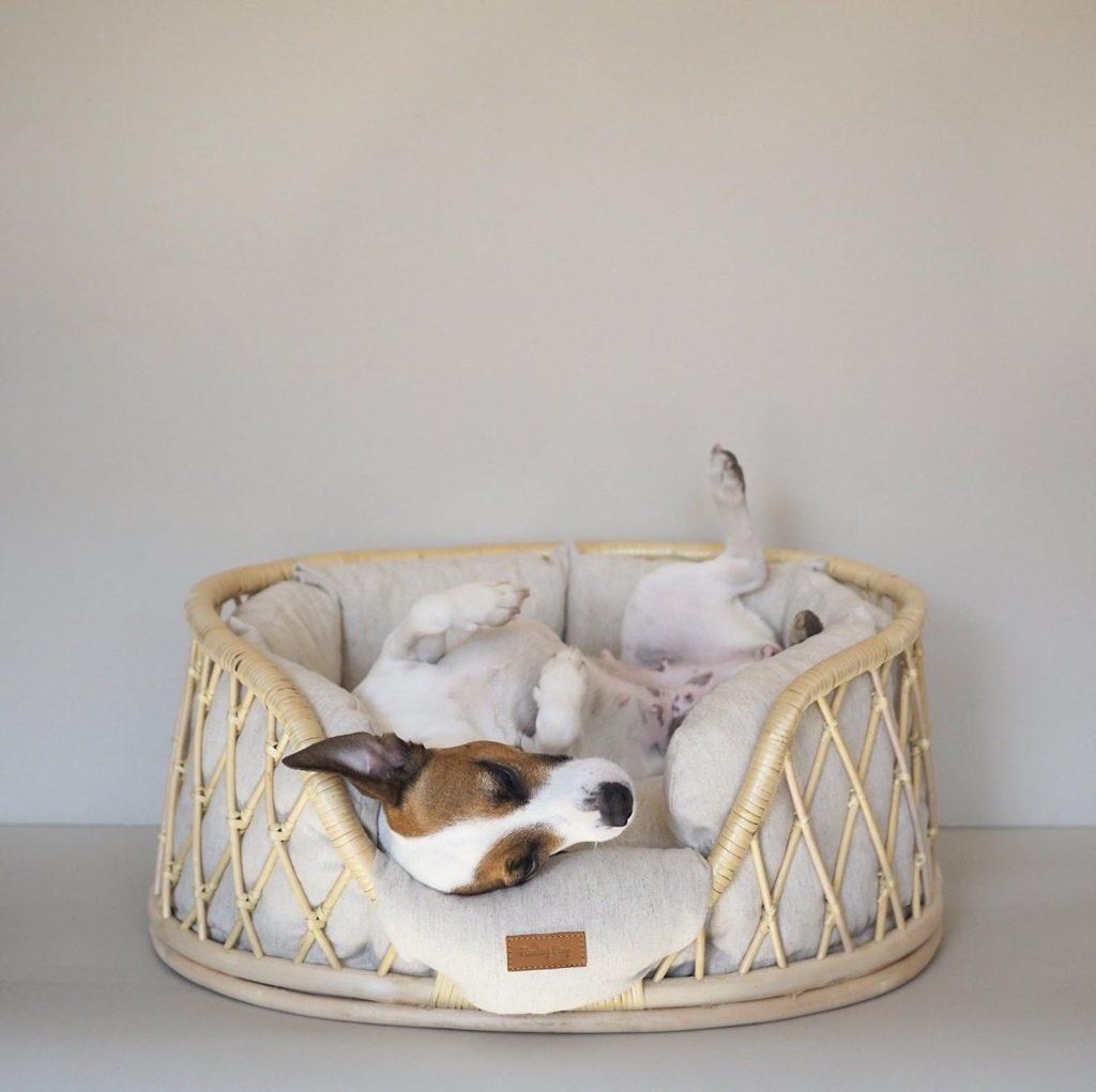 Image via Etsy/Hunting Pony feat. Vine Dog Bed