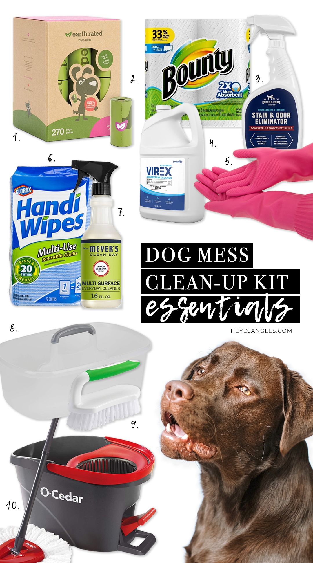 7 Simple Tips for Keeping a Clean Home with Dogs - Dog mess clean-up kit essentials