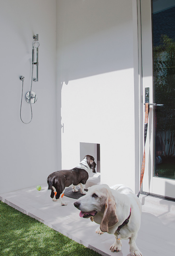 25+ STYLISH DOG DOOR IDEAS FOR THE DISCERNING PET OWNER - Hey, Djangles. Wall dog door, wall mount dog door, pet door ideas, doggie door ideas, Bassett hounds, external shower, outside shower. Image: Phil Kean Designs.