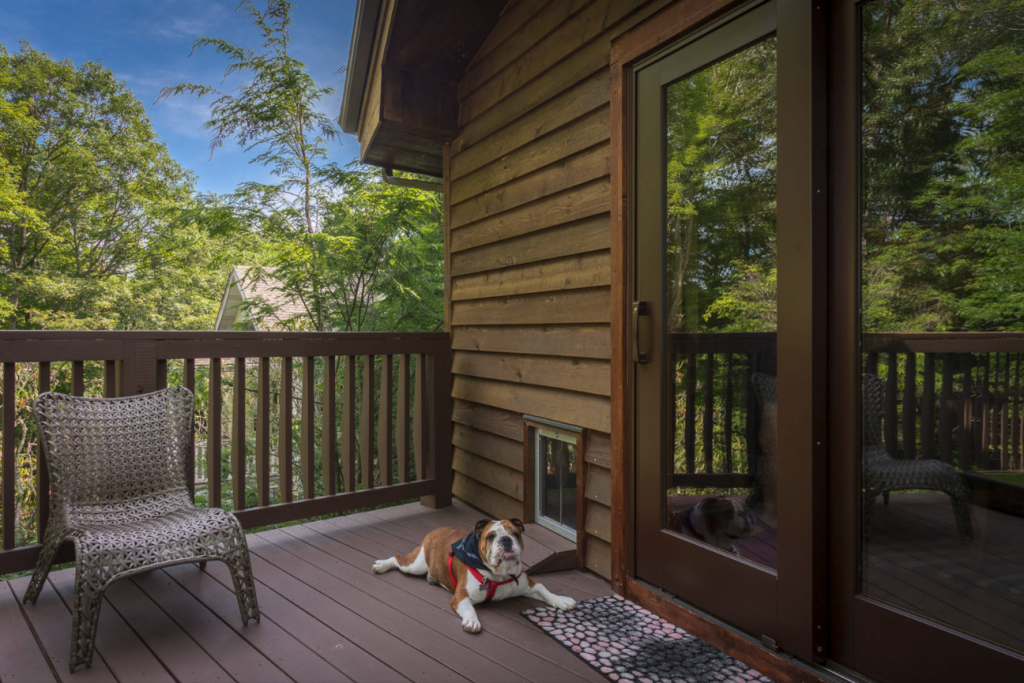 25+ STYLISH DOG DOOR IDEAS FOR THE DISCERNING PET OWNER - Hey, Djangles. Wooden cabin with wall dog door, wall mount dog door, pet door ideas, dog door ramp, Bulldog. Image: Bernard Russo.