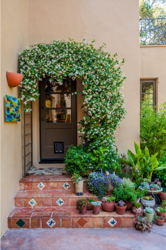 25+ STYLISH DOG DOOR IDEAS FOR THE DISCERNING PET OWNER - Hey, Djangles. Mediterranean entryway with pet door, exterior door with built in pet door, door with pet door, pet door ideas, cat flap, small dog door, climbing plant entryway. Image: Houzz.