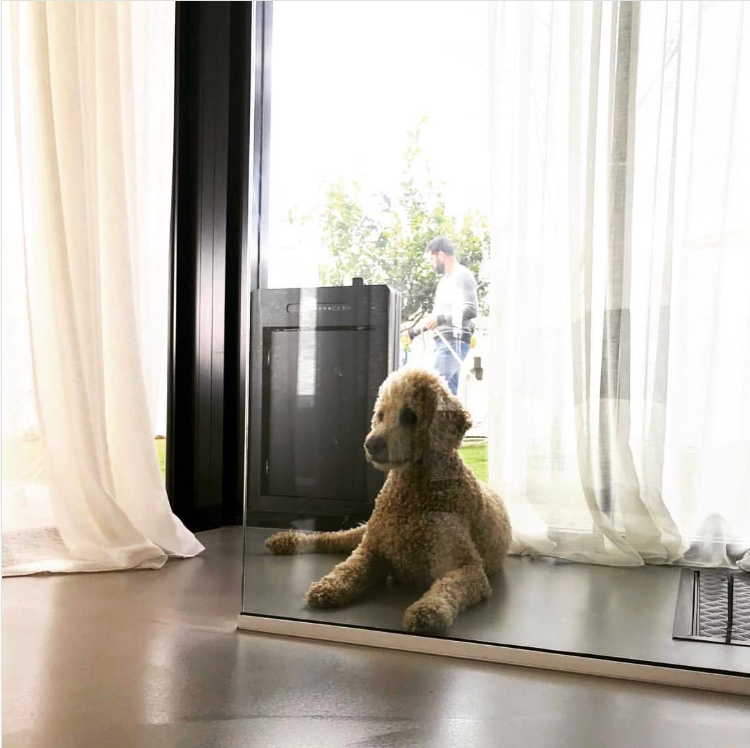 25+ STYLISH DOG DOOR IDEAS FOR THE DISCERNING PET OWNER - Hey, Djangles. Microchip pet door, electronic pet door, window dog door, safe pet door, Poodle. Image: @tripledeckhouse