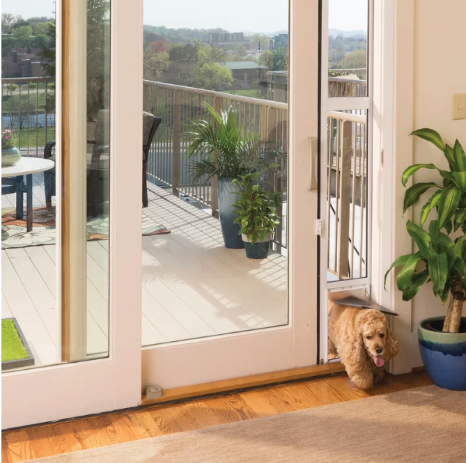 25+ STYLISH DOG DOOR IDEAS FOR THE DISCERNING PET OWNER - Hey, Djangles. Sliding glass door dog door, glass door pet door, PetSafe Patio Panel pet door, Cocker Spaniel. Image: PetSafe