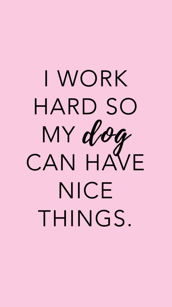 i work hard so my dog can have nice things, mobile phone wallpaper, dog-lover