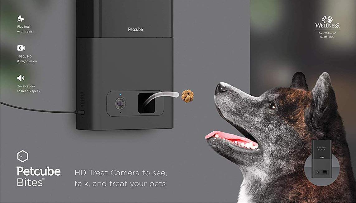 REVIEW: Petcube Bites vs Furbo Dog Camera in 2019 - Hey