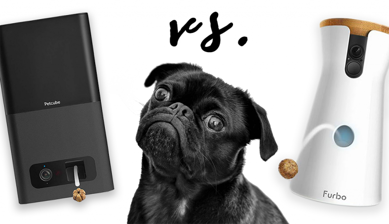 REVIEW: Petcube Bites vs Furbo Dog Camera 2019 - heydjangles.com - pet camera product review, pet camera comparison, best dog camera. Pet monitor, treat-dispensing dog camera, pet tech. #petcamera #doglover