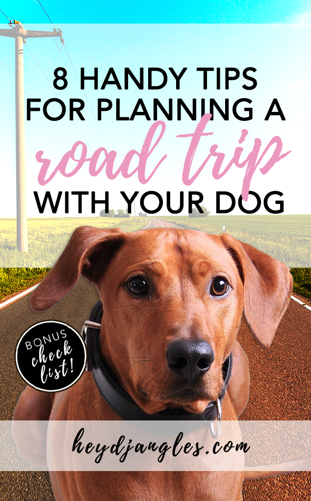 8 Tips For Planning A Cross Country Road Trip With Your Dog (+ FREE checklist) - heydjangles.com, traveling with your dog, dog travel tips, dog car tips #doglife #doglover