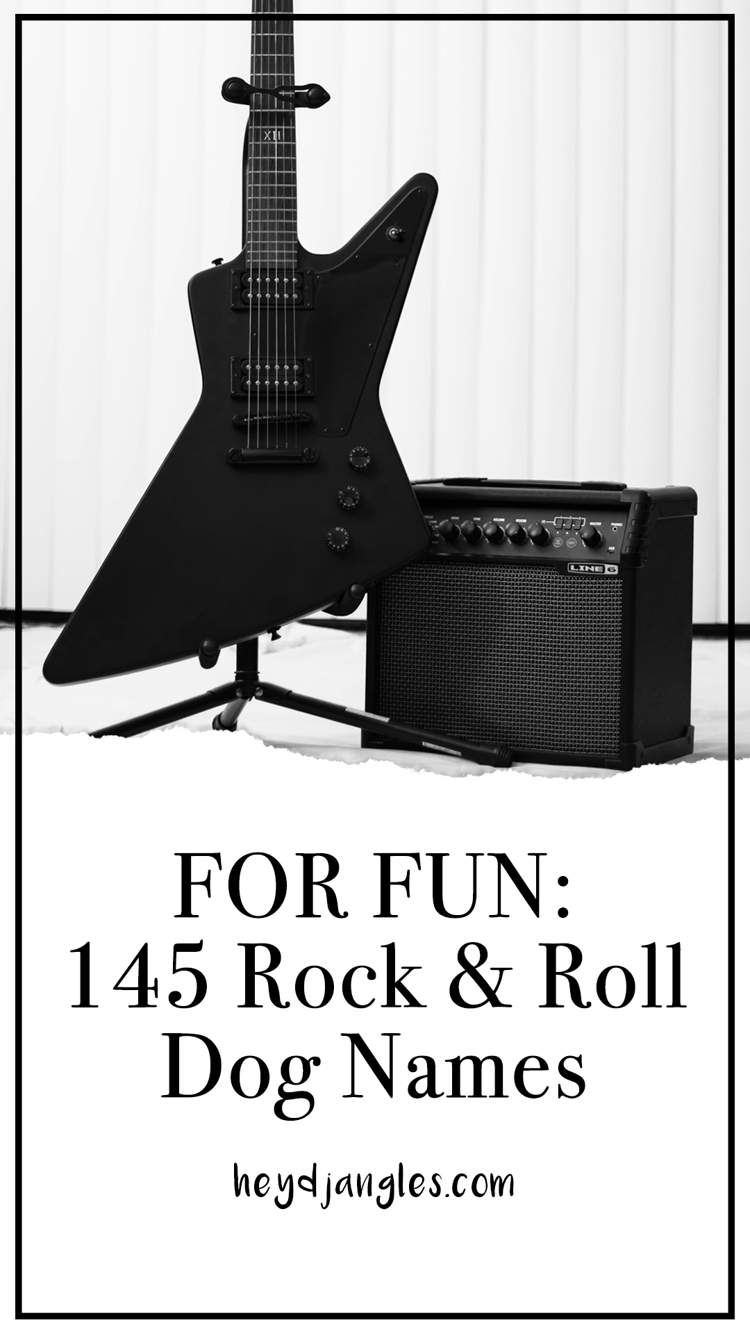 FOR FUN: 145 Rock and Roll Dog Names – heydjangles.com – dog name ideas, rocker dog names, rock star dog, dog names inspired by music, male and female singer dog names, unique dog names, cool dogs.