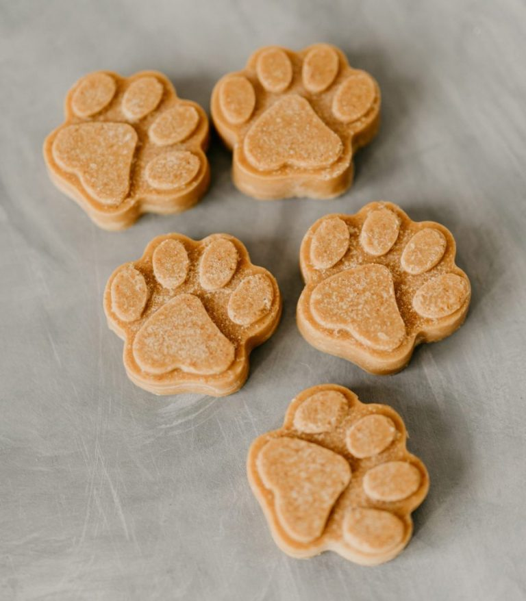 Simple Peanut Butter Dog Treat Recipes, Healthy Peanut Butter Coconut Oil Dog Treats via House Fur