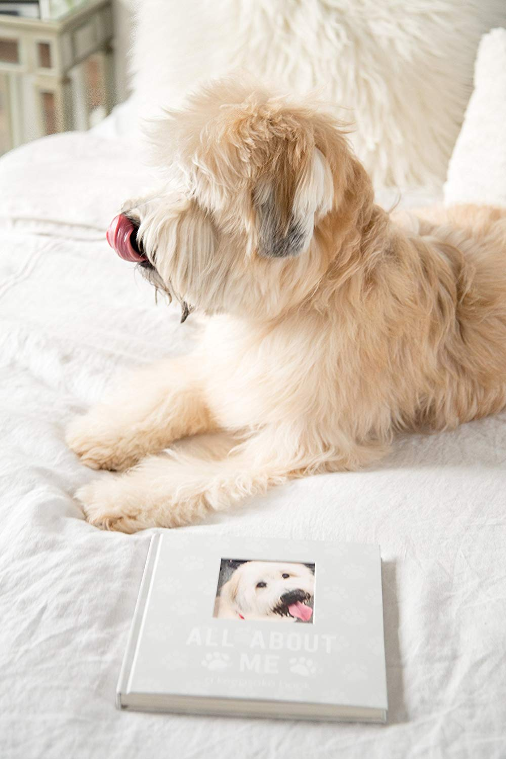 12 Gorgeous Gifts for New Puppy Parents, puppy dog journal