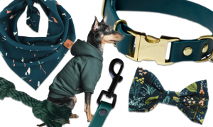 ADORABLE HUNTER GREEN DOG COLLARS AND ACCESSORIES – Hey, Djangles. heydjangles.com – designer dog collars and accessories, biothane dog collar, vegan leather dog collar, dark green waterproof dog collar, forest green, emerald green, sophisticated pet accessories, designer dog clothes. #doglover #designerdogcollar