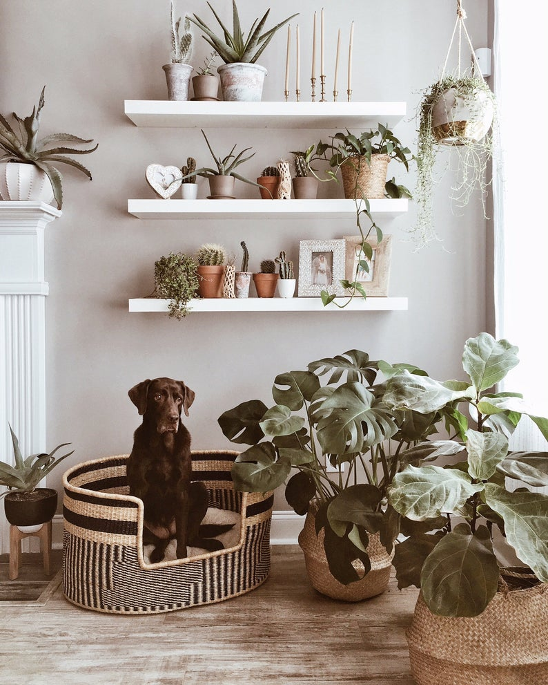 ROUND-UP: 25+ Rattan and Wicker Dog Beds and Baskets You'll Love - feat. Handmade Dog Bed Lounger from Home by Design Dua (Etsy)