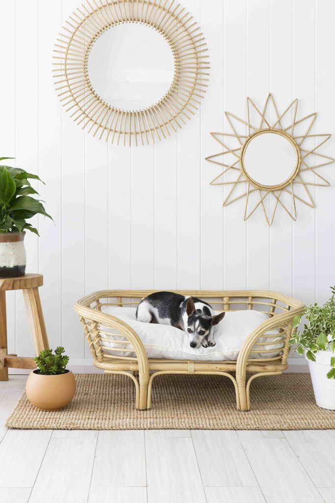 ROUND-UP: 25+ Rattan and Wicker Dog Beds and Baskets You'll Love - feat. Mini Lounger Dog Bed from Byron Bay Hanging Chairs (Australia)