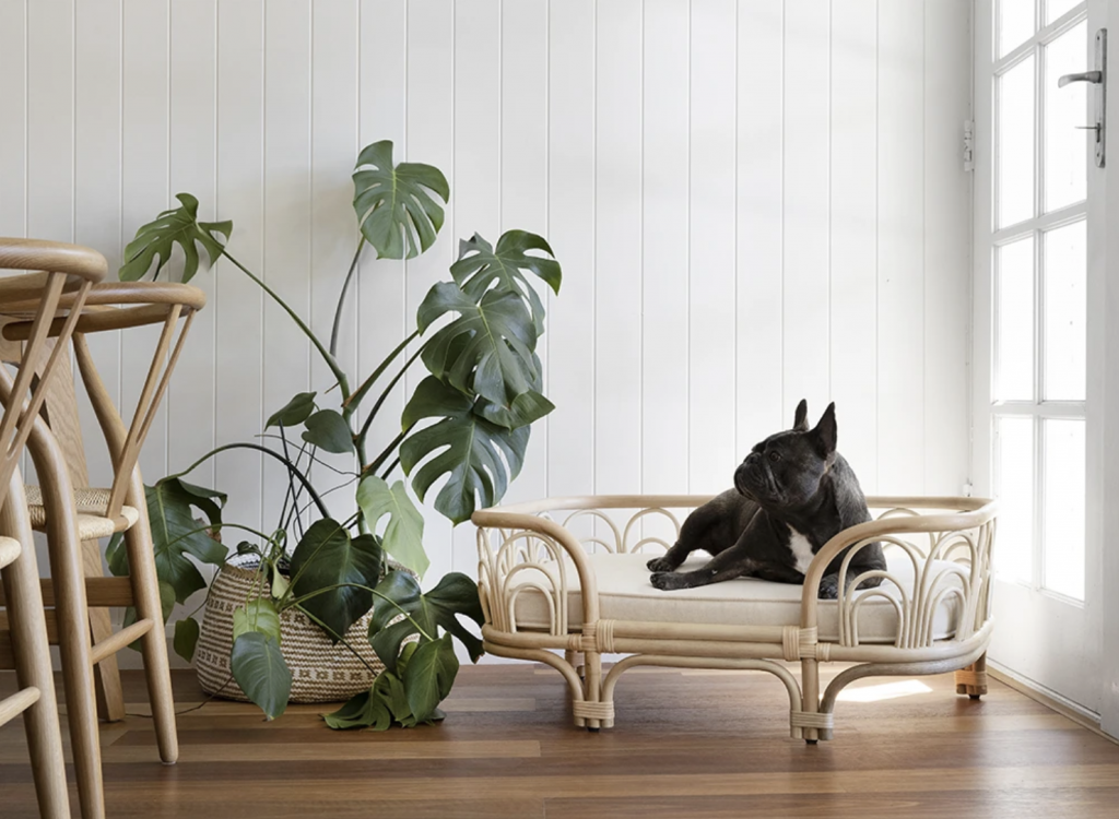 ROUND-UP: 25+ Rattan and Wicker Dog Beds and Baskets You'll Love - feat. 'Emma' Rattan Pet Bed from The Bee's Knees Collective
