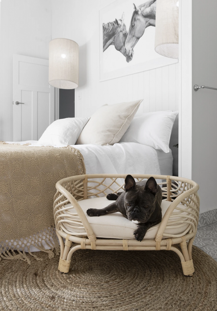 ROUND-UP: 25+ Rattan and Wicker Dog Beds and Baskets You'll Love feat. Amber Rattan Pet Bed from The Bee's Knees Collective