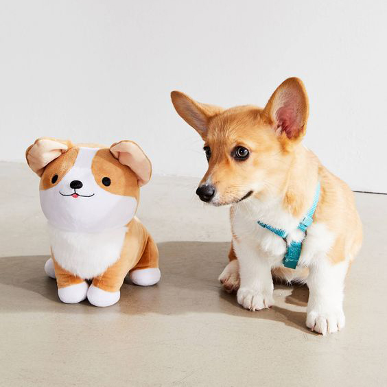 60 Gifts for Corgi Lovers, Corgi Plush Toy