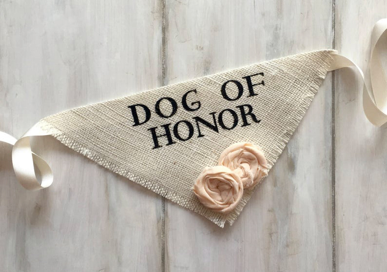 doggy wedding attire, dogs in wedding photos, 'dog of honor' dog bandana