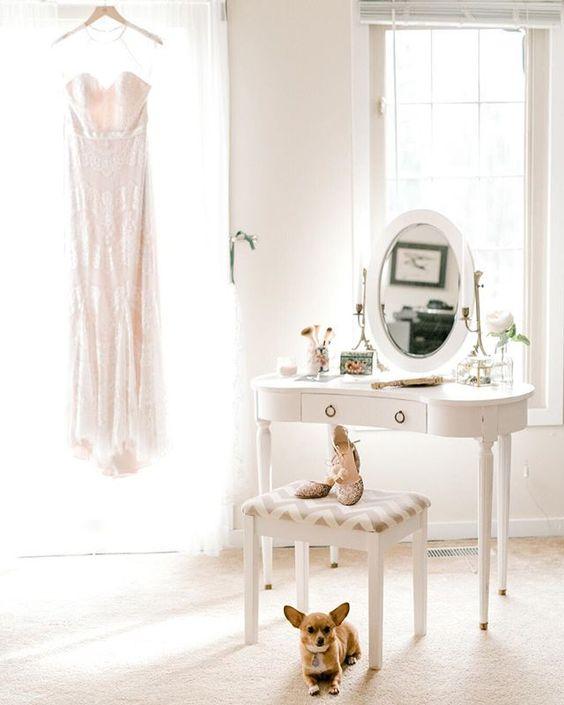How to Include your Dogs in your Wedding Photos (30+ Sweet Pics) – heydjangles.com, doggy wedding attire, dogs in wedding photos, Chihuahua #doglover #dogsatweddings #weddingdog