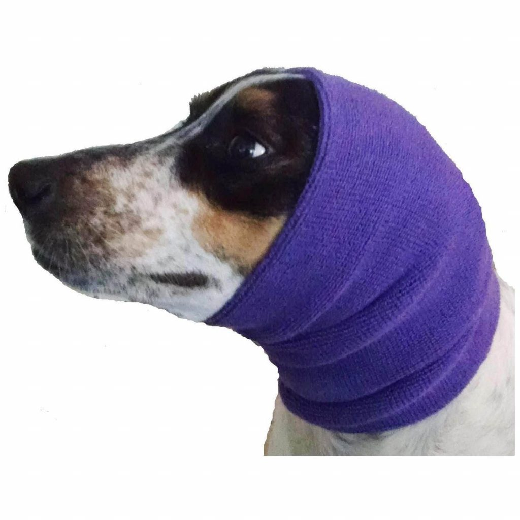 5 Tips for Preventing Ear Infections in Dogs, heydjangles.com - Happy Hoodie via Amazon