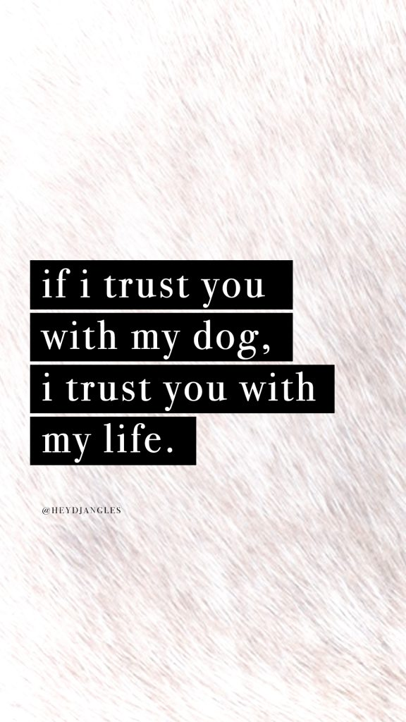 cute dog quote wallpaper for iphone or android