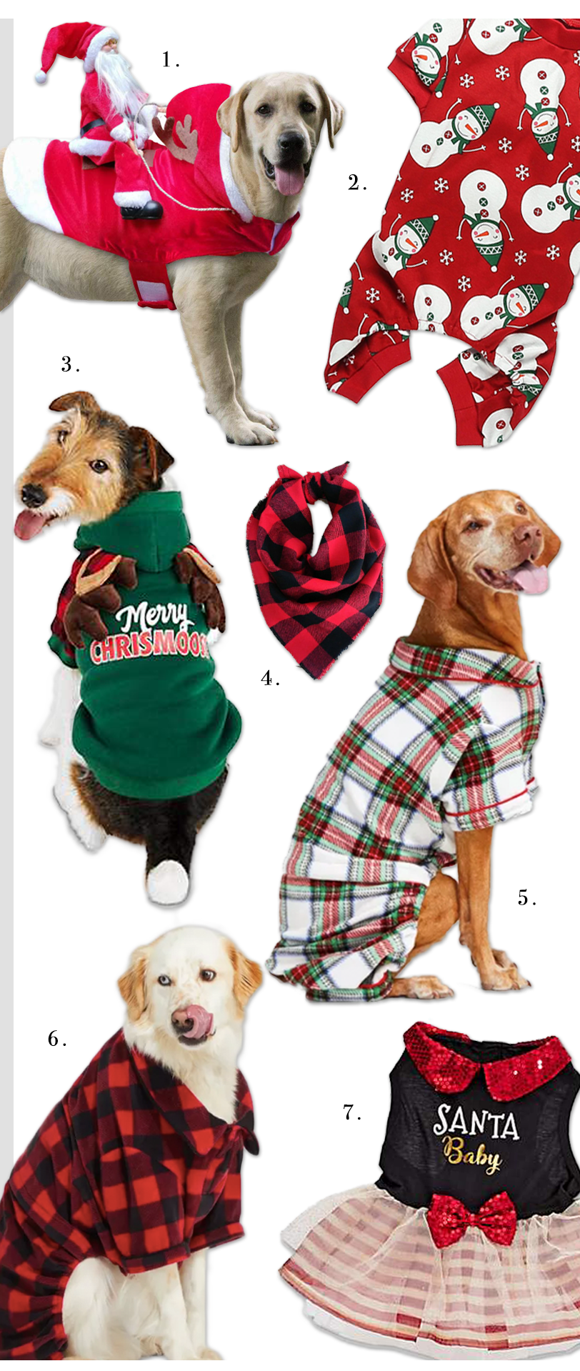 10 Cute Christmas Costumes For Large Dogs Hey Djangles