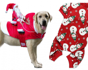 7 Cute Christmas Costumes for Large Dogs - Hey, Djangles. Dog Christmas outfit ideas, dog costumes for big dogs, XL, XXL.