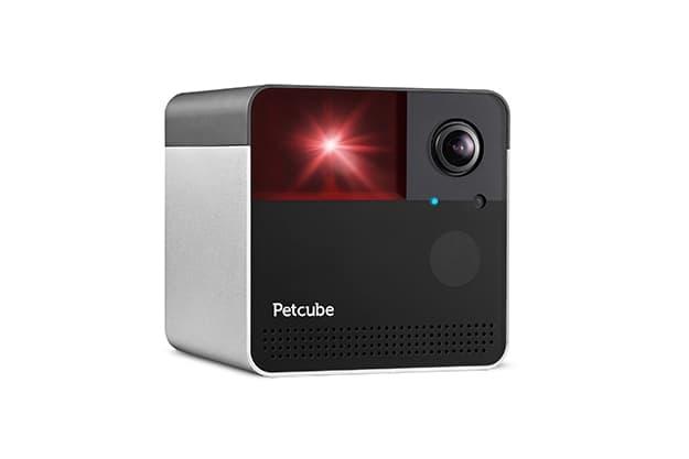 Petcube Review - Petcube Play 2
