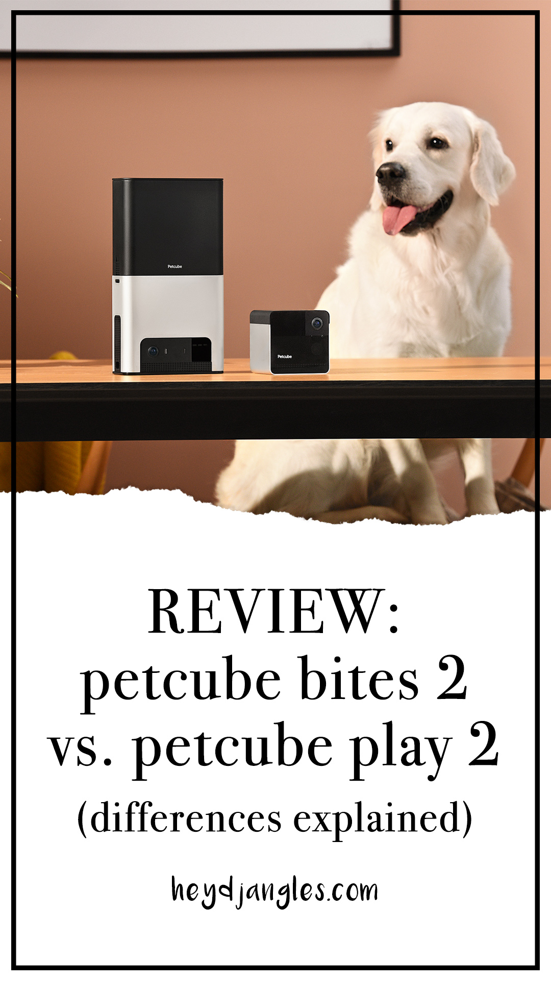 Petcube Review: Bites 2 vs Play 2 (Differences explained) - heydjangles.com - pet camera product review, pet camera comparison, best dog camera, best cat camera, pet monitor, treat-dispensing dog camera, laser toy pet camera, pet tech, pet surveillance camera #petcamera #pettech