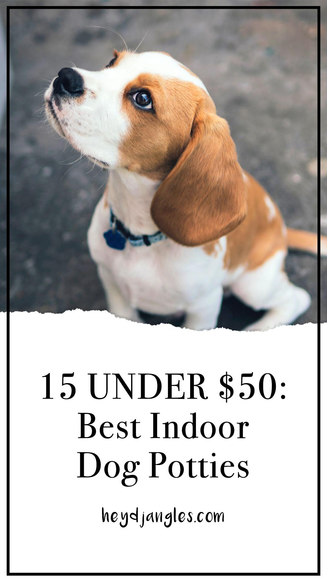 15 UNDER $50: Best Indoor Dog Potties –heydjangles.com, puppy toilet training, indoor dog potty, potty training your dog.