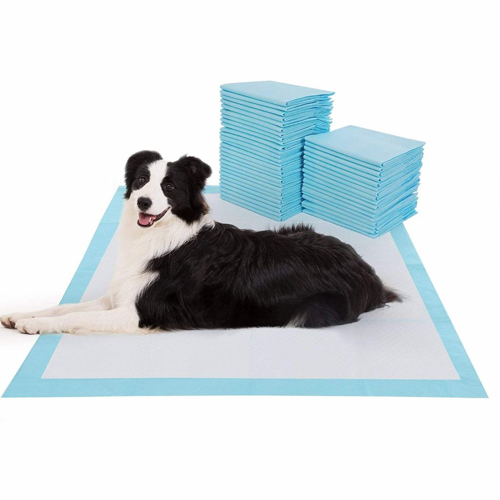 15 UNDER $50: Best Indoor Dog Potties –heydjangles.com, puppy toilet training, indoor dog potty, potty training your dog. Puppy pads for large dogs.