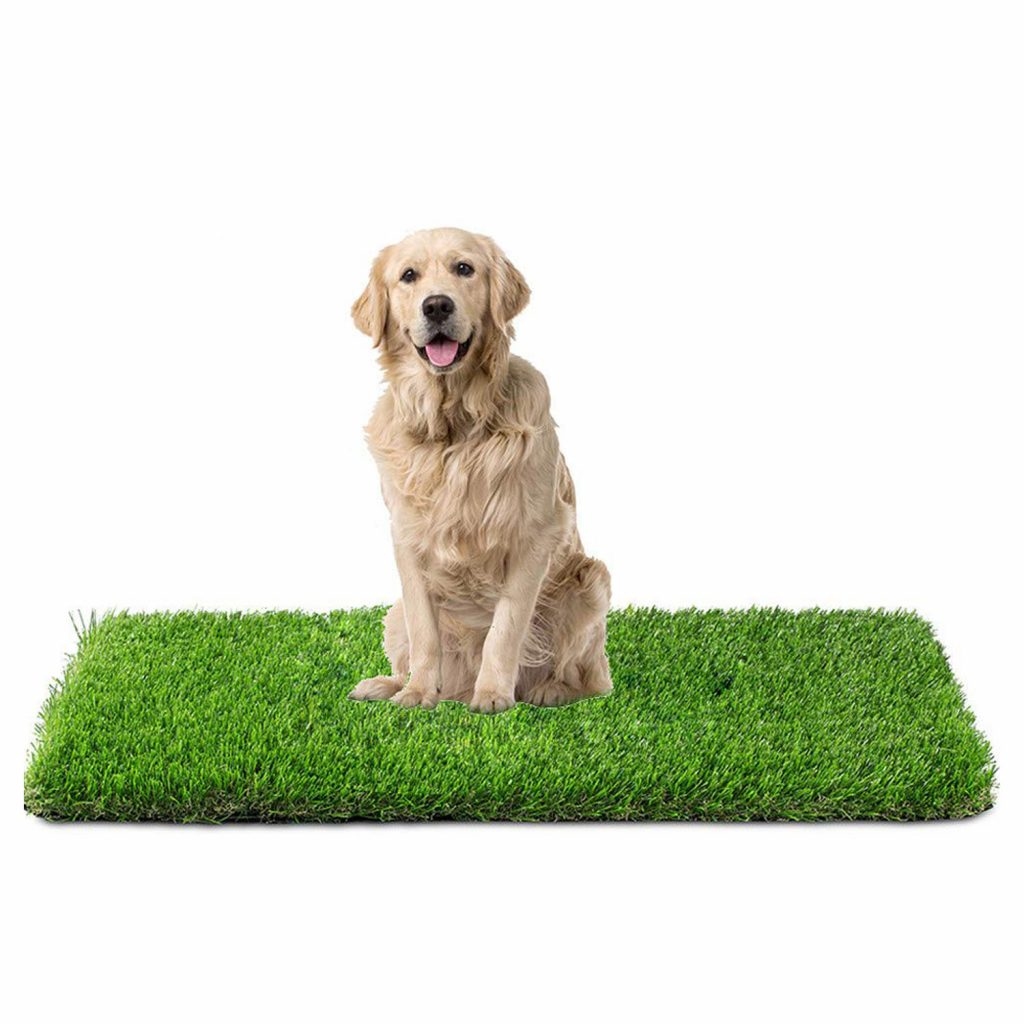 15 UNDER $50: Best Indoor Dog Potties –heydjangles.com, puppy toilet training, indoor dog potty, potty training your dog. Pet turf, artificial grass.