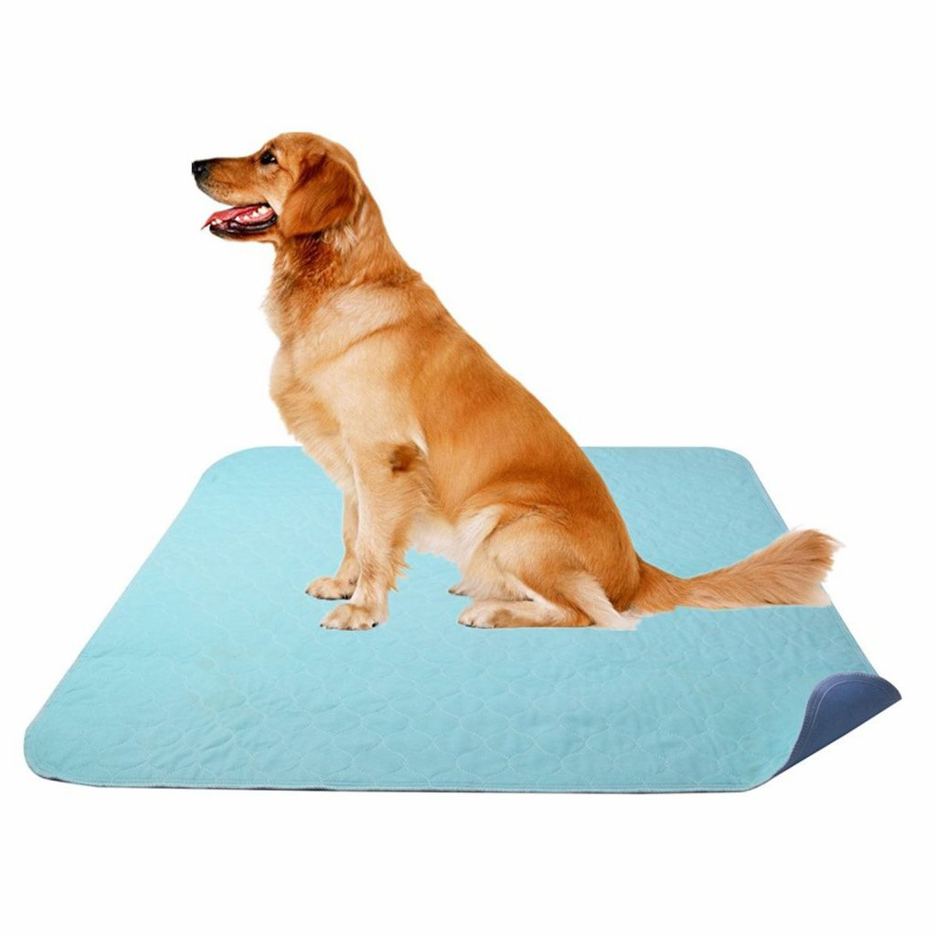 15 UNDER $50: Best Indoor Dog Potties –heydjangles.com, puppy toilet training, indoor dog potty, potty training your dog. Puppy training pads.