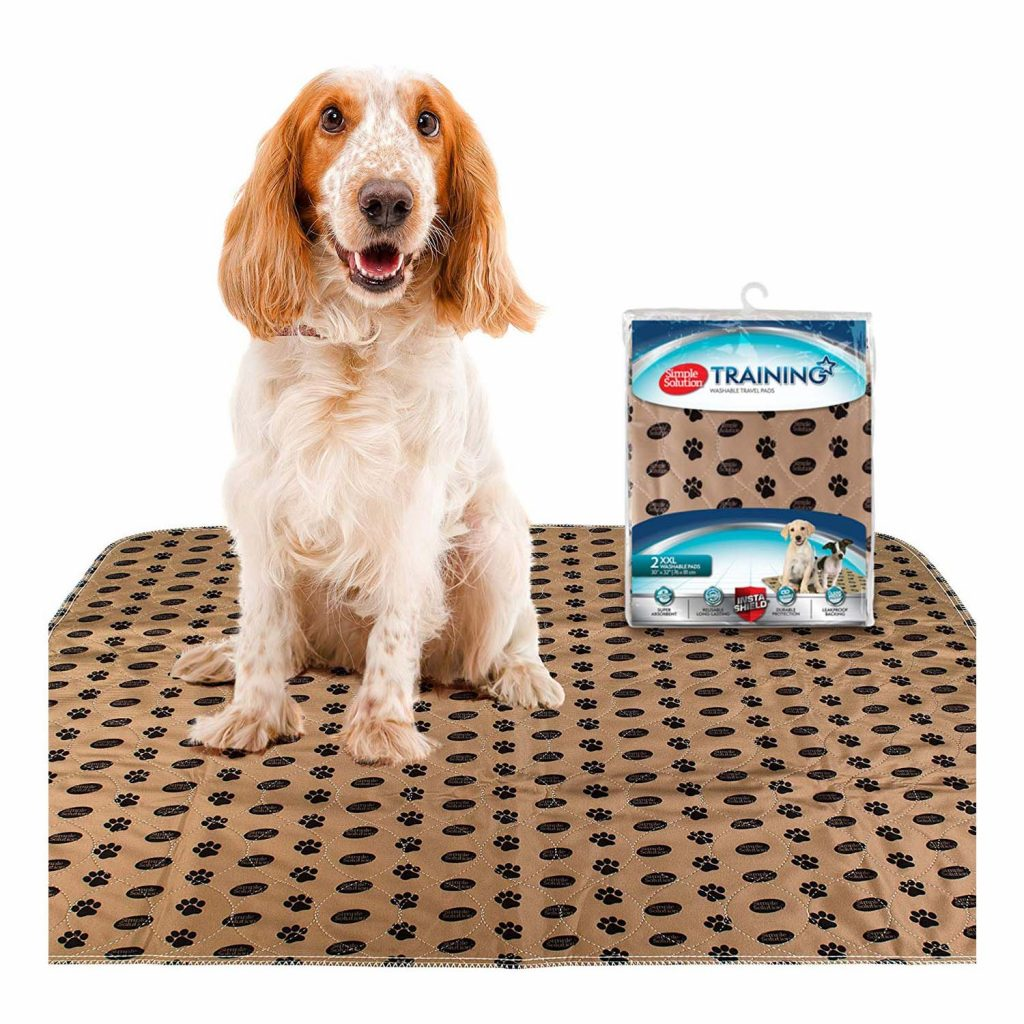 15 UNDER $50: Best Indoor Dog Potties –heydjangles.com, puppy toilet training, indoor dog potty, potty training your dog. Washable puppy pads.
