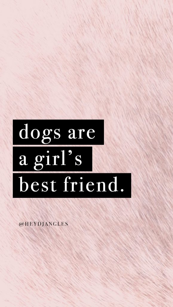 cute dog quote wallpaper for iphone or android, dogs are a girl's best friend.