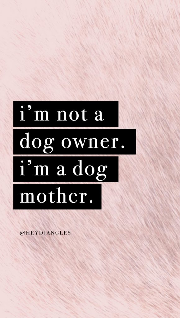 cute dog quote wallpaper for iphone or android, im not a dog owner. im a dog mother.