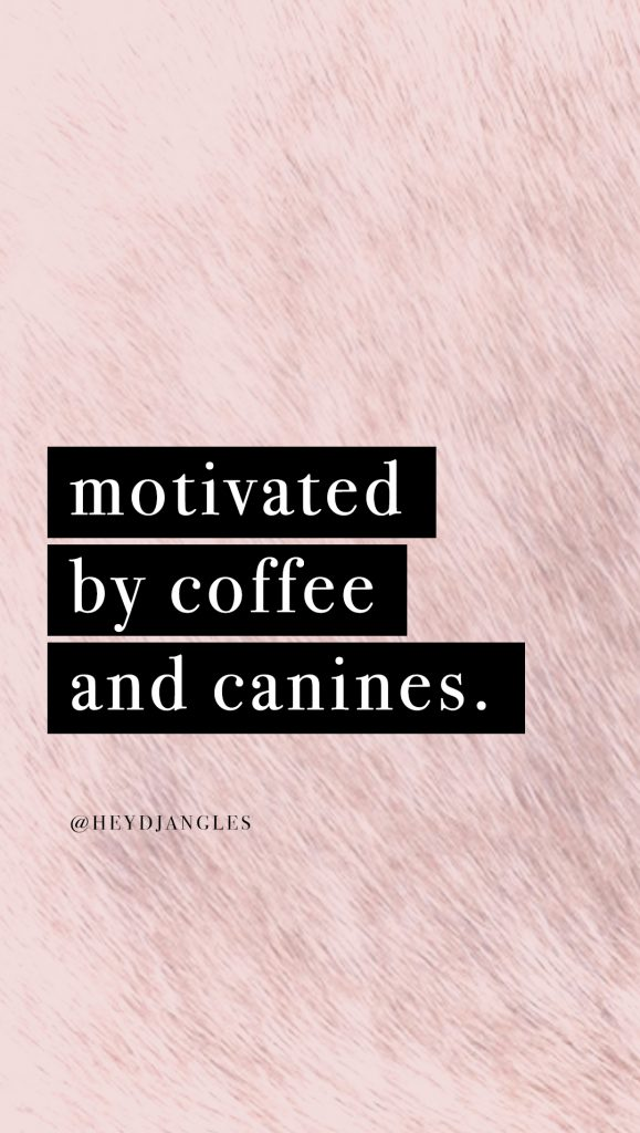 cute dog quote wallpaper for iphone or android, motivated by coffee and canines.