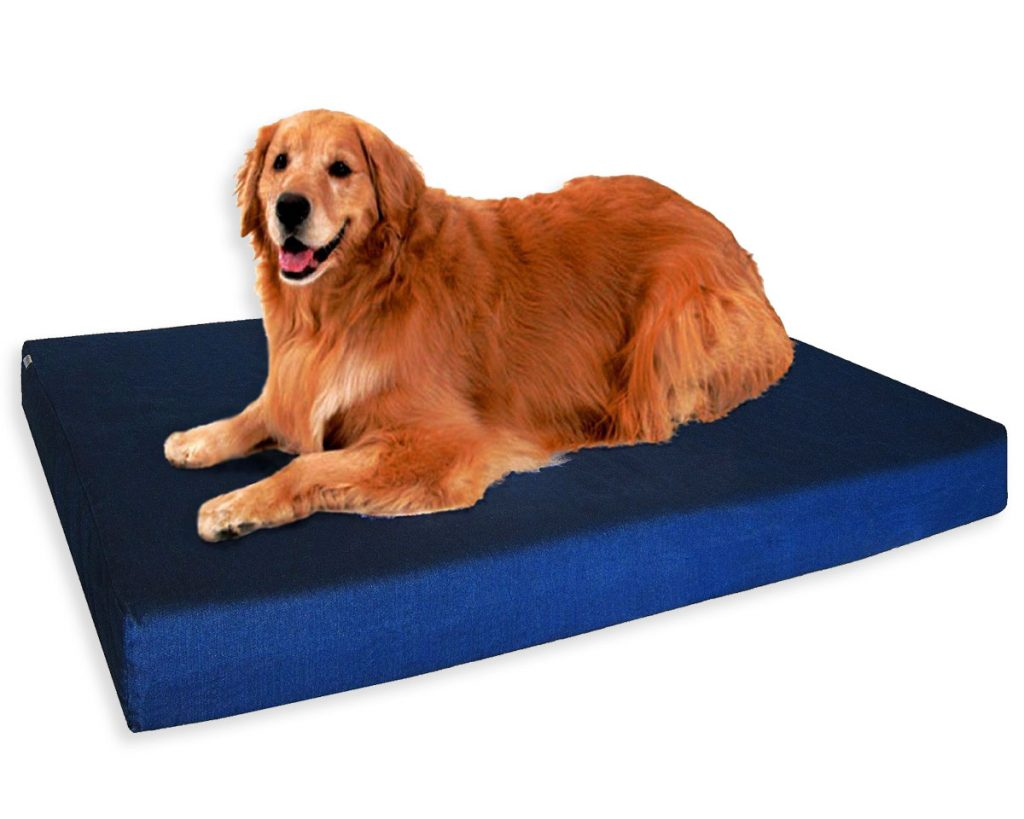Best Orthopedic Dog Beds for Arthritis - heydjangles.com - memory foam dog bed, Golden Retriever.