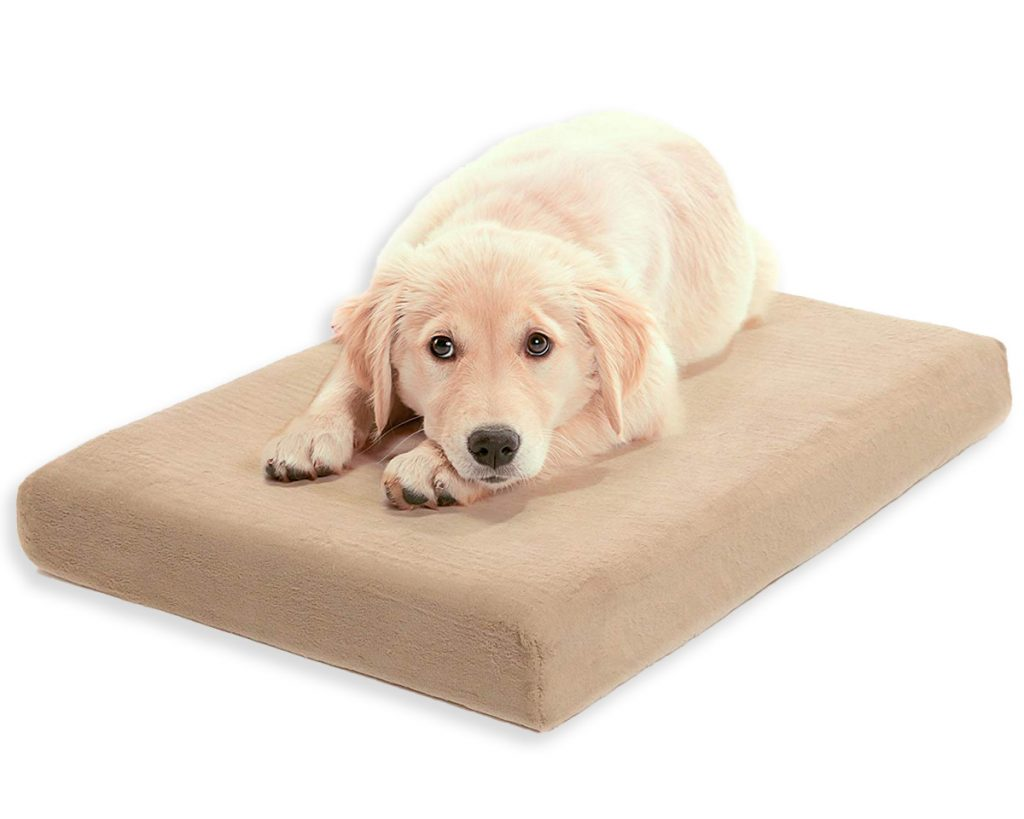 Best Orthopedic Dog Beds for Arthritis - heydjangles.com - memory foam dog bed, Golden Retriever puppy.