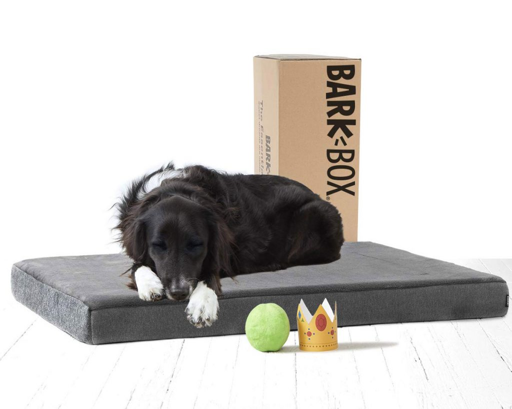 Best Orthopedic Dog Beds for Arthritis - heydjangles.com - BarkBox, memory foam dog bed.
